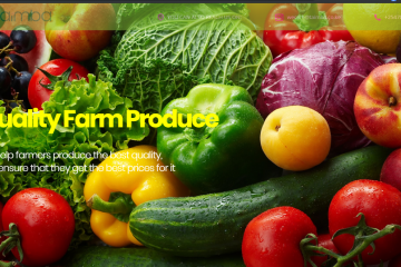Kenyan B2B Agri-Tech Start-Up Taimba Gets $ 100K in Funding from Gray Matters Capital's coLABS